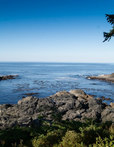 Ucluelet Photograph by Lisa Eva Ernst